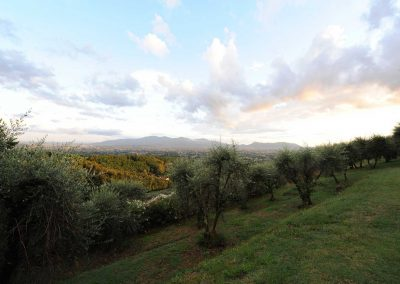 View from villa retreat, Tuscany