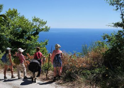 walking in Pelion, Greece